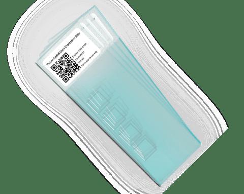 Visium Spatial Tissue Optimization Slides