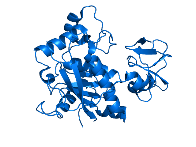 Crystal structure of ADAMTS4. Rendered from PDB 2RJP. CREDIT: Mattyjenjen