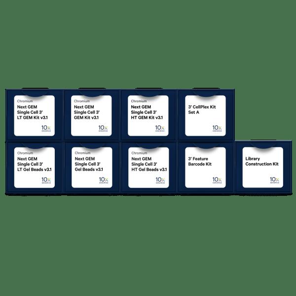 Chromium シングルセル試薬